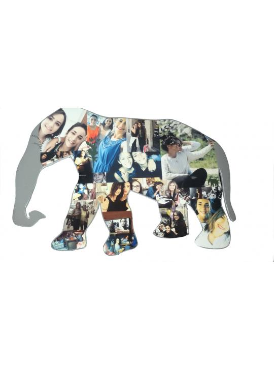 صور على شكل فيل